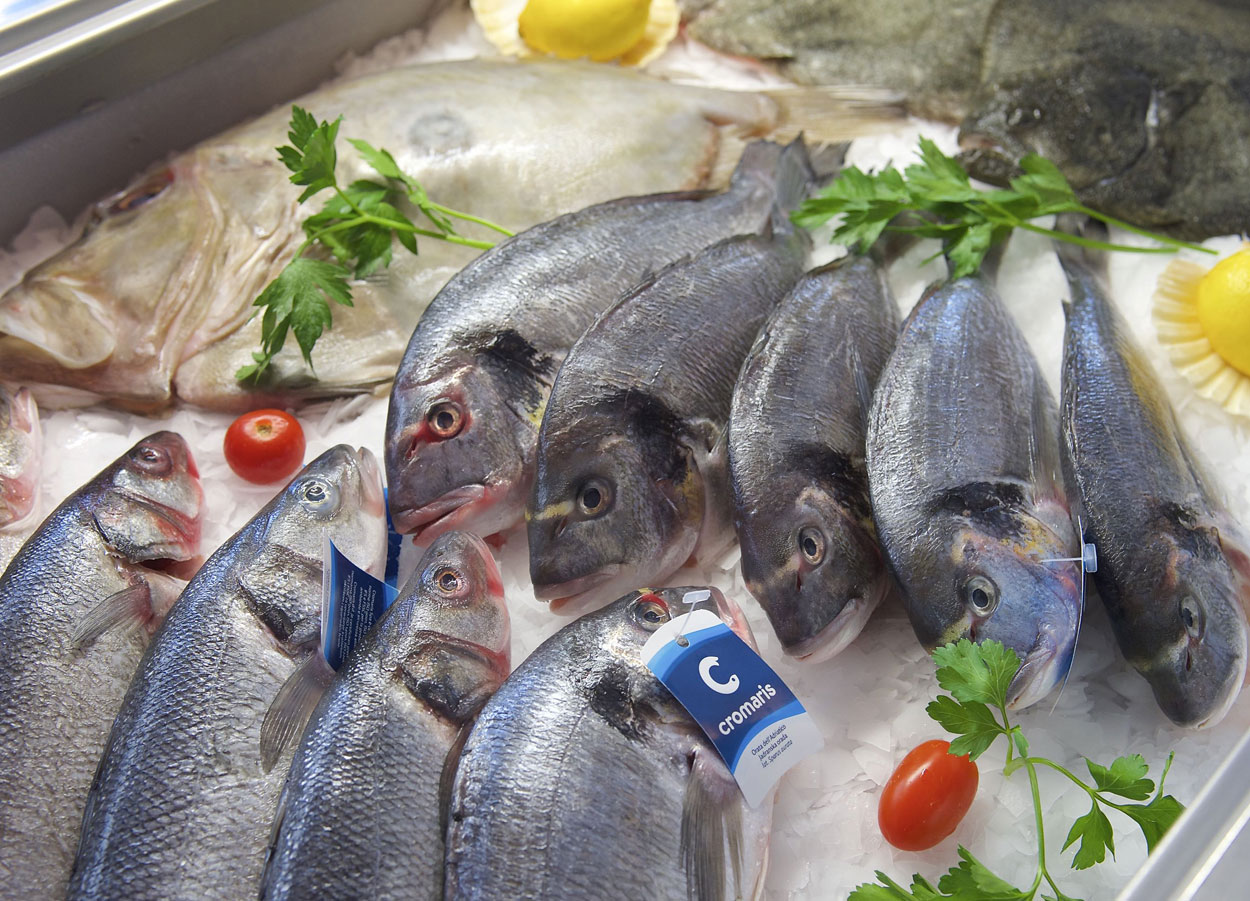 Fresh Adriatic fish