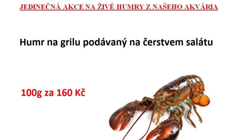 14615757_881222818646223_3704424064891191195_o-300x212.jpg